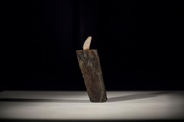 Marcos Carnero - Ecultura gravitaciones - 4